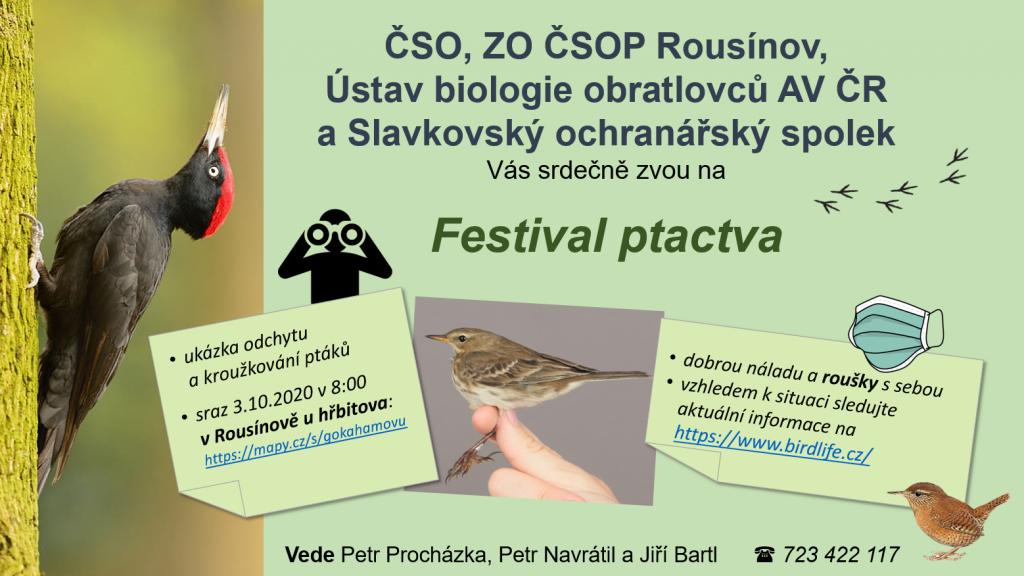 Festival ptactva